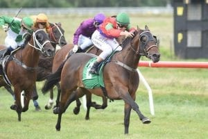 All In Vogue set to strike a pose in another Cup feature this Saturday