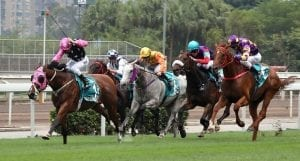 Champions Mile win puts Beauty Generation in Horse of the Year frame