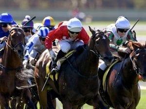 Corstens stable dominates VOBIS Gold Rush