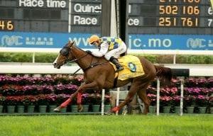 Calder boosts Kiwi jockey ranks