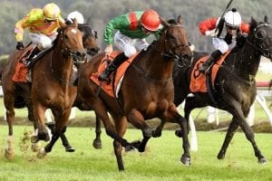 Capucine commences autumn campaign on a winning note