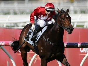 Thrillster win perfect tonic for Corstens
