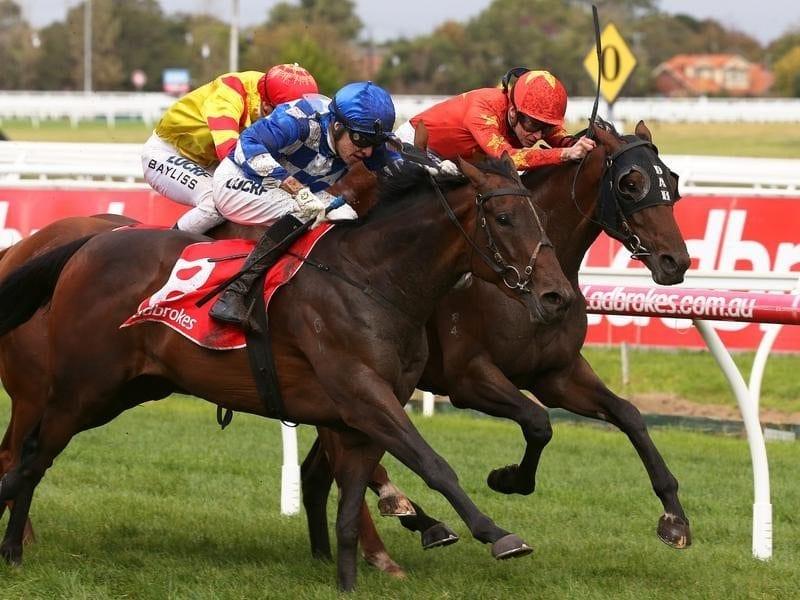 Jockey Jordan Childs rides Won Won Too to victory.
