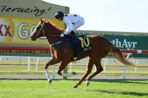 Don't Tell Mama set to stay at Doomben
