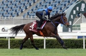 Japan chases first Chairman's Sprint Prize