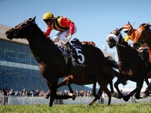 Spirit of Boom to stand for Qld record fee
