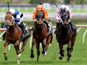 Destiny's Kiss to back up at Rosehill