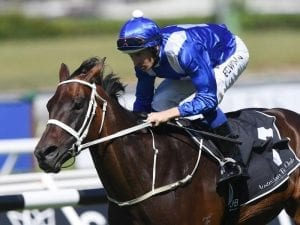 Winx puts in guest appearance at Randwick