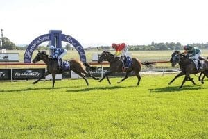 Hawkesbury betting preview, tips & top odds | Monday, April 05