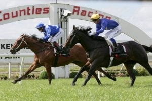 Local filly opens the day with a win at Pukekohe