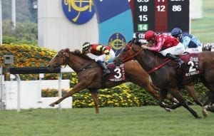 Lucky Bubbles set for Royal Ascot raid after Chairman's Sprint Prize