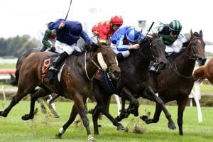 Stakes trial produces thrilling finish