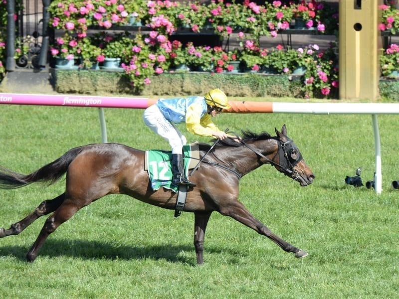 Bring Me Roses gets another Oaks chance | Horse Betting
