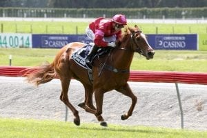 Prom Queen ready to dance her way to Brisbane Winter Carnival