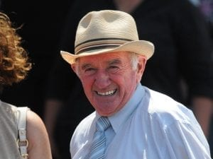 True Excelsior chasing Randwick stakes win