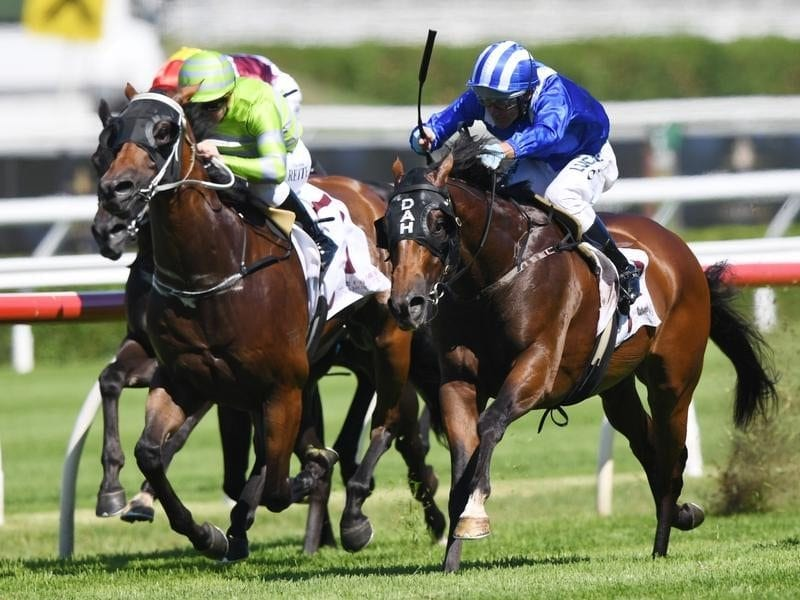 Muraaqeb ridden by Damien Oliver wins race two at Randwick