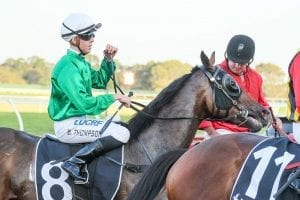 Sunday Pray to chase maiden Caulfield win