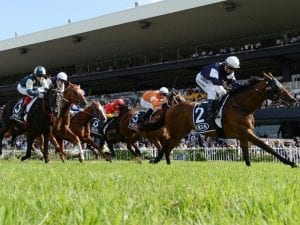 Almandin with chance to add Sydney Cup