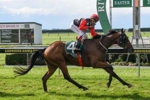 The Gordonian wins at Riverton