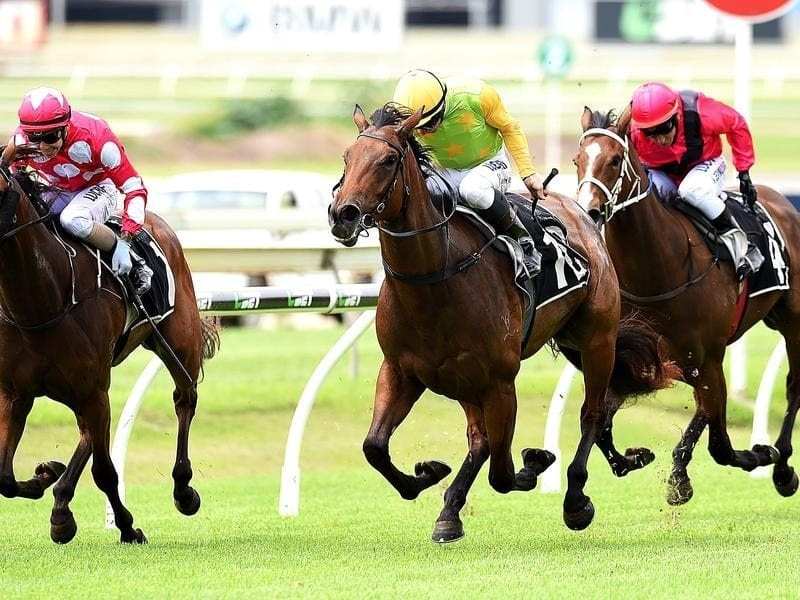 Jockey Jim Byrne rides Shamurt (c) to victory in race two at Toowoomba