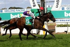 NZ stayer Weather With You