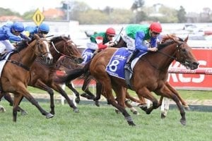 Top mare Bonneval returning to work