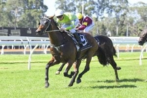 Dissolution stakes claim for Brisbane trip