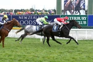 Double for powerful Pitman stable