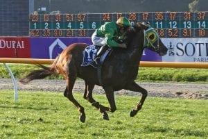 Stakes reward for smart mare Genuine mare