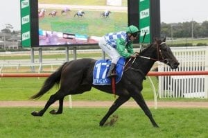Imported youngster to further Derby quest