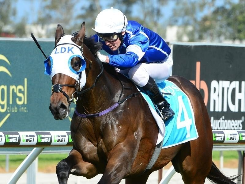 Captivator wins at the Gold Coast