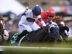 Burning Passion to step up to G1 company
