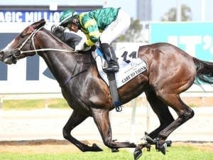 McDonald to ride in Group One race