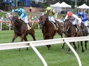 Valley race the next step for Bel Sonic