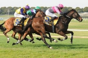 Medals chases a fitness boost at Sandown