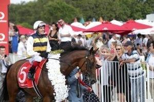 NZ jockey Waddell taking extended break
