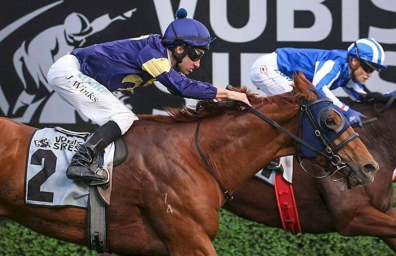 Back-up plan for Qld Derby hope Mahamedeis