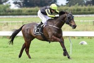 Sprinter chasing perfect return