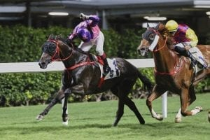 Doleuze salutes as French celebrations conclude at Happy Valley