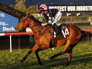 Weighty task confronts in-form sprinter