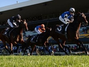 Our Century bound for Brisbane Cup