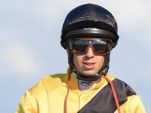 The Getaway eyes off McKell Cup back-up