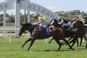 Pike's group winner on Cup trail again