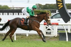 Sprinter back to his front-running best