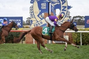 Terang betting preview, top tips & best odds | Monday, 22/02/21
