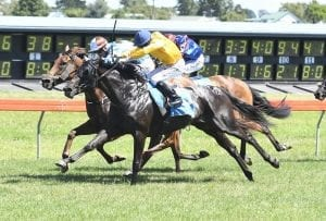 Filly takes her chances to earn Oaks berth