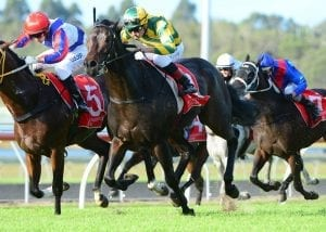 Browne to team up with Derby hope