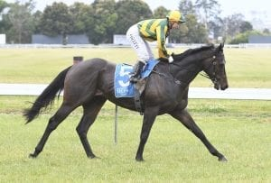 Doomben ideal for Time Lord