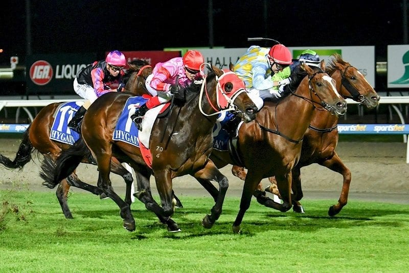 vaal horse racing betting systems