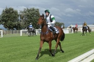 Smart 2YO doesn't disappoint on debut